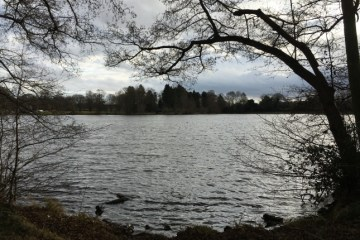 Himley Hall Lake