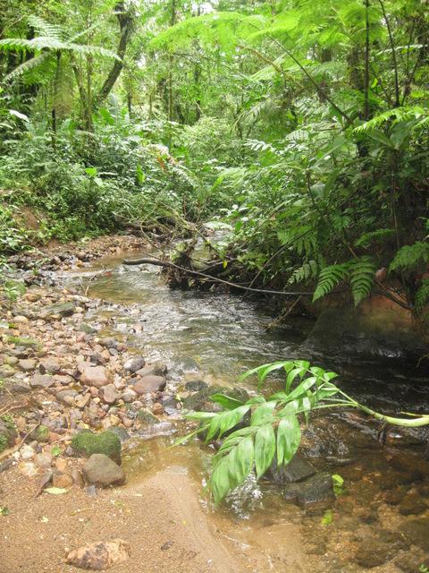 Quebrada Cuecha