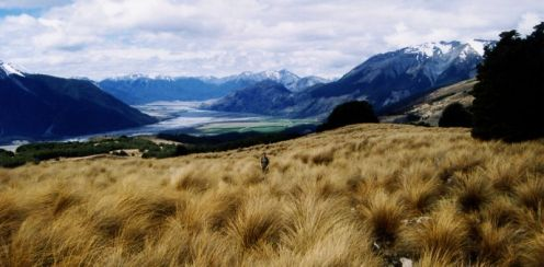 Hiking in New Zealand