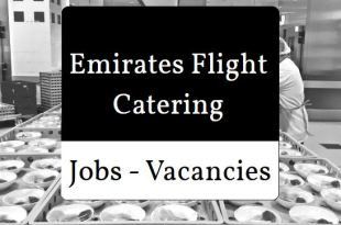 Emirates Catering Jobs for fresher