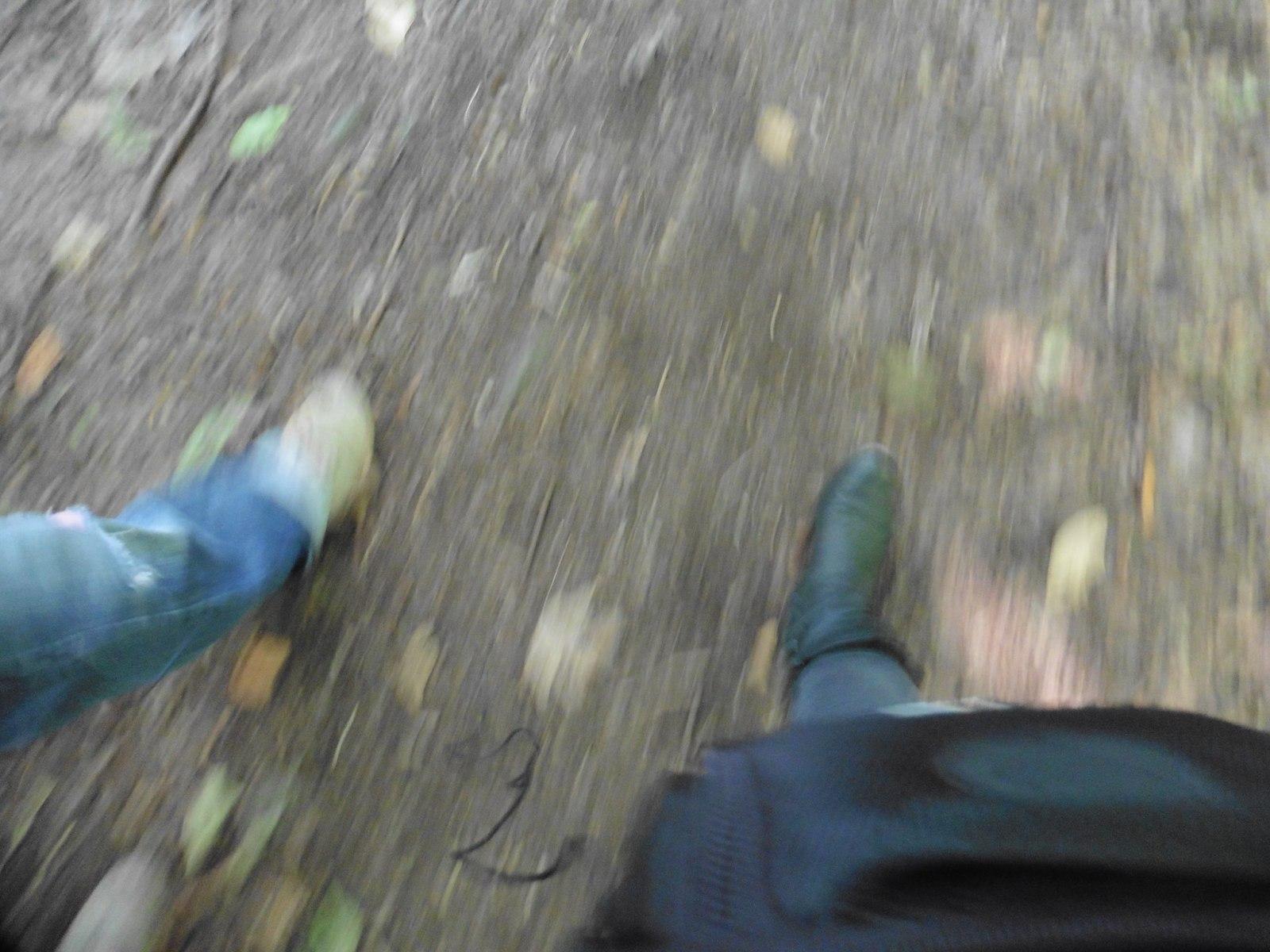 1572959007.whilewalking_pohannapynefienberg