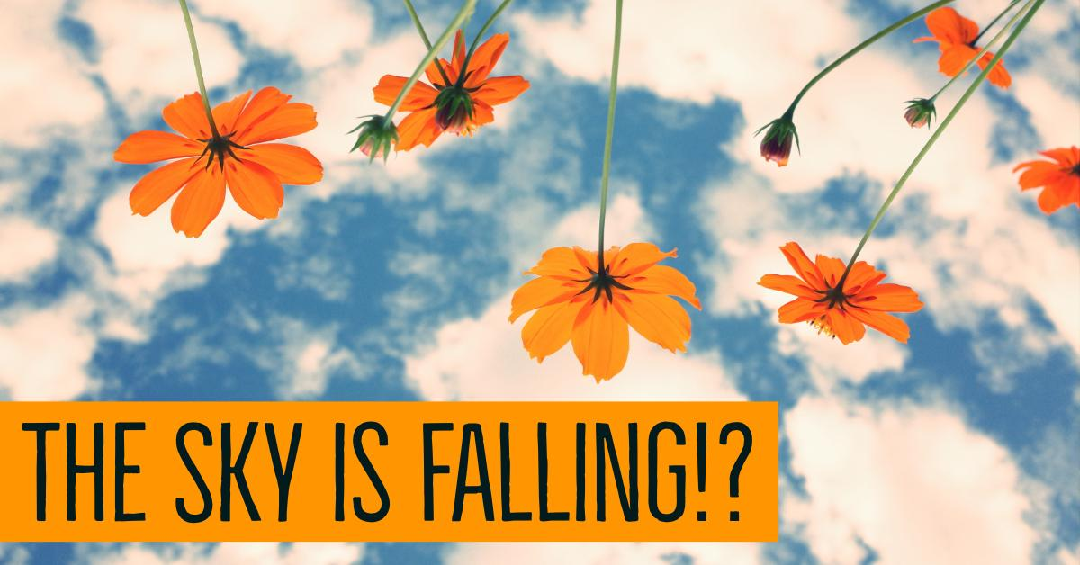 Is the Sky Falling? Our Take on Recent Stock Market Volatility