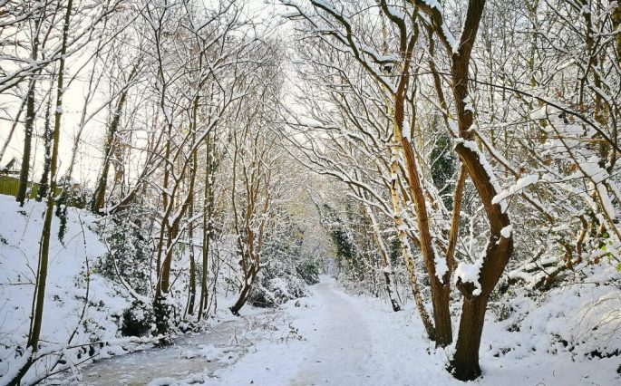 Harborne Walkway in Winter