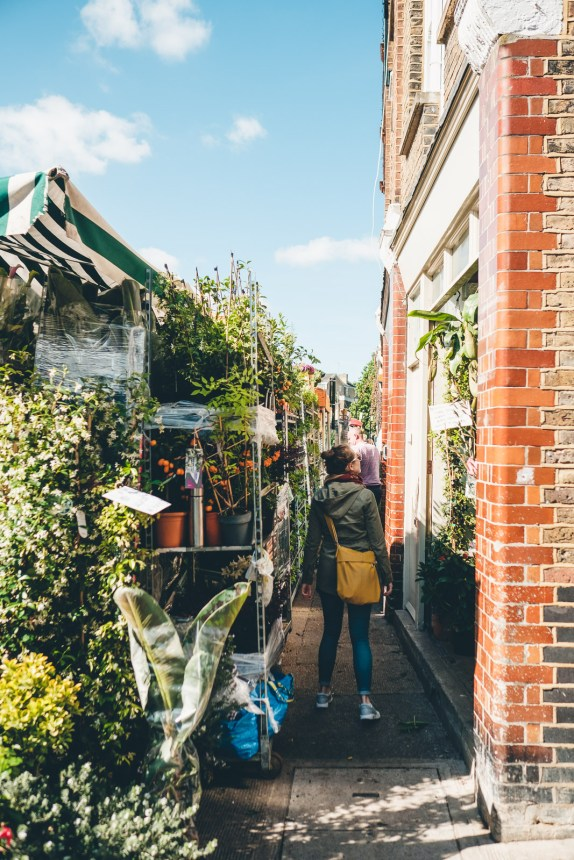 Columbia Road Flower Market London Behind The Scenes