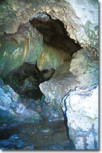 Horne Lake Caves