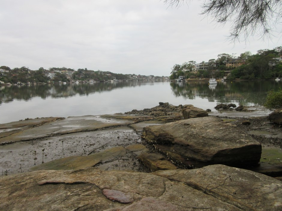 Low tide on the Georges River, Green Point facing east