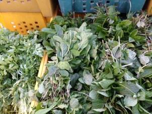 fresh mint and herbs