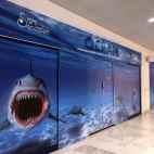 Palissade de travaux aquarium centre commercial