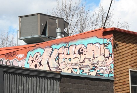 Nixon graffiti on Mont-Royal