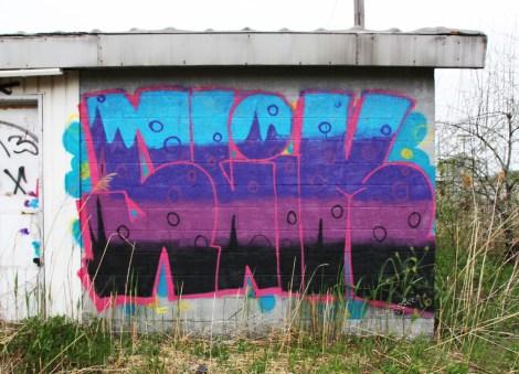 Slik piece found in Côte-des-Neiges