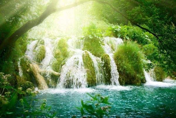 Фотообои Водопад среди деревьев 1666 купить в Украине ...