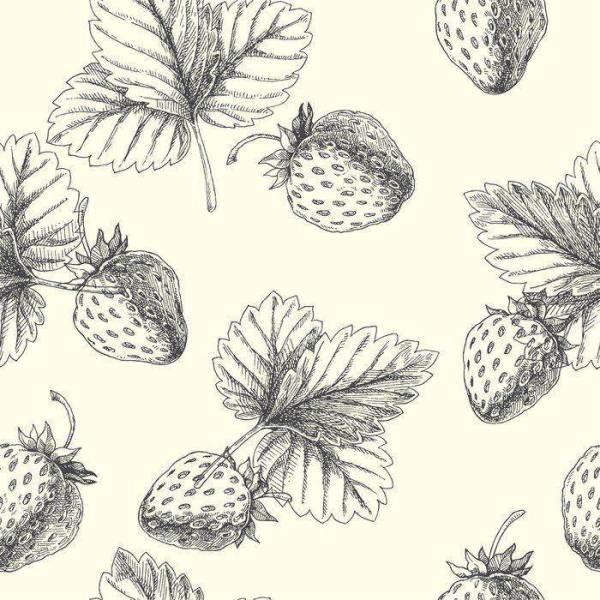 Обои для кухни Иллюстрация клубники на заказ №psh_0000472 ...