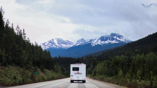 Rent or Own RV