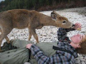This deer loves granola!