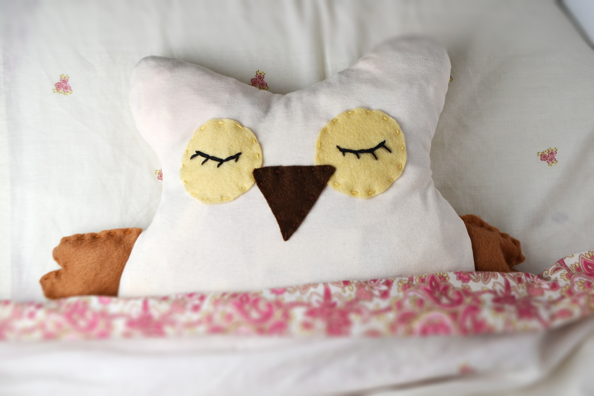 DIY: Microwavable Owl Softie