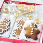 DIY Christmas Treat Bags