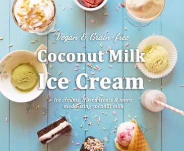 Coconut Milk Ice Cream: Vegan & Grain-free Ice Creams & Frozen Treats - Made Using Coconut Milk