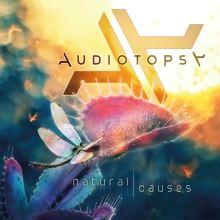 audiotopsynaturalcausescd