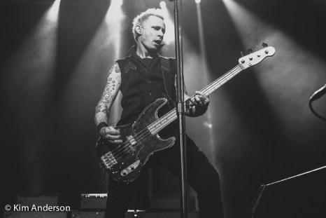 Green Day-078