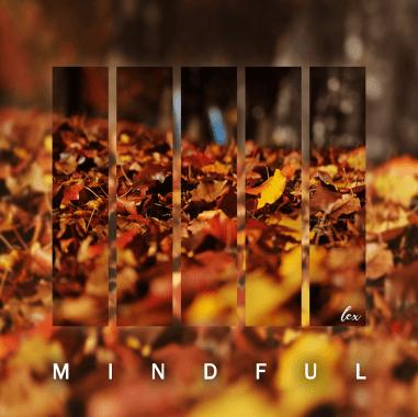 mindful lex