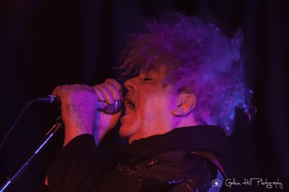 The Melvins (5)
