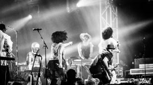 NPG @ Bluesfest 18 WOS 16
