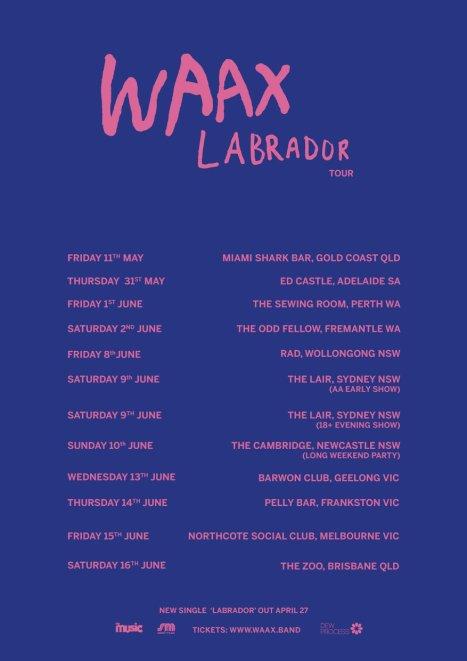 WAAX Labrador Tour.jpg