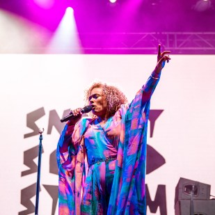 Sneaky Sound System-2