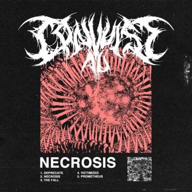 Convulse AU - Necrosis