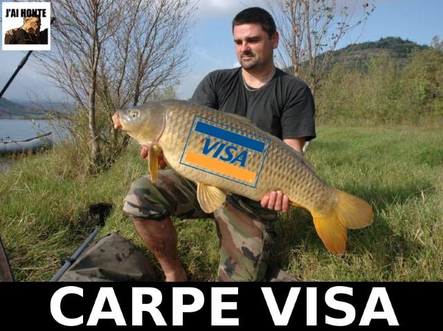 j-ai-honte-carpe-visa