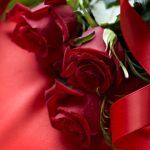 Red Rose Wallpapers Free Download Group  70   Beautiful 3D Red Rose Wallpaper  Desktop HD Wallpaper   Download