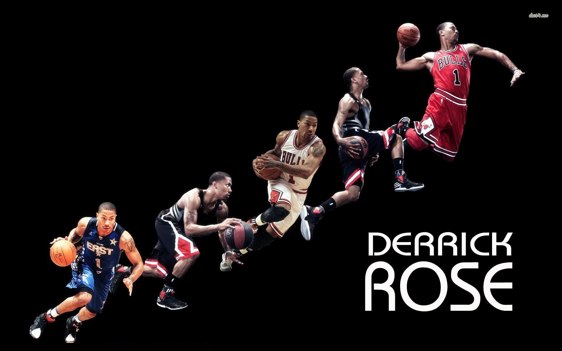 derrick rose chicago bulls basketball