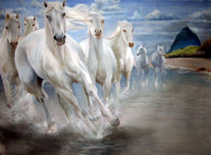 Hd Wallpaper Of Seven Horses The Galleries Of Hd Wallpaper