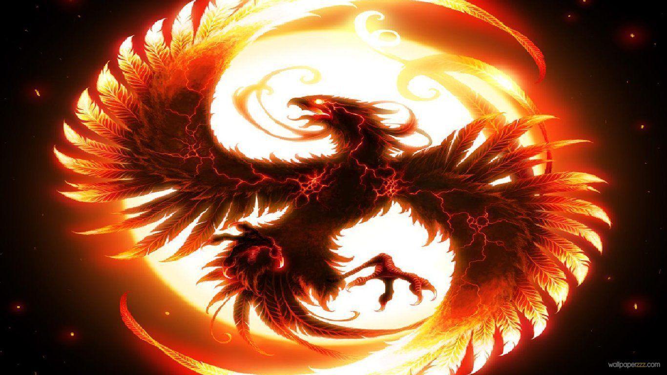 Cool Dragon Wallpaper Wallpaper Hd Wide