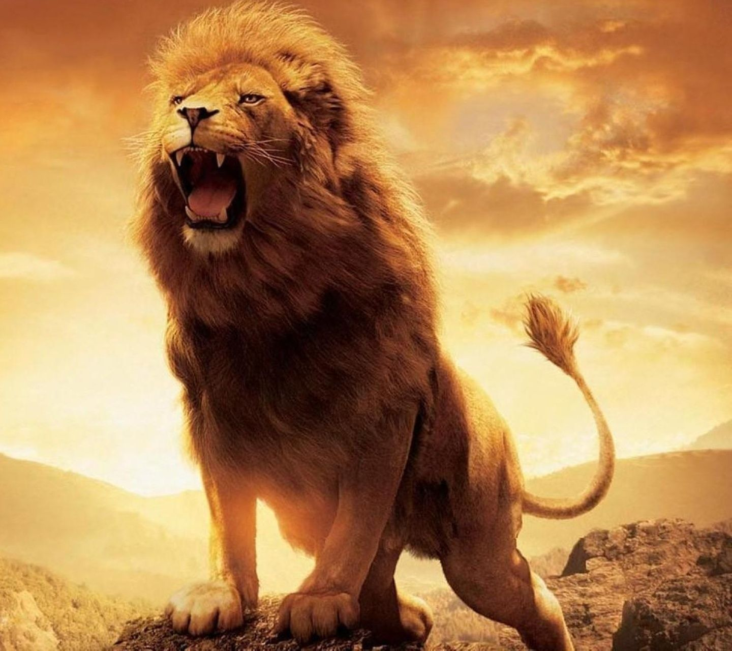 Roaring Lion Wallpapers Top Free Roaring Lion Backgrounds Wallpaperaccess