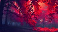 Permalink to Red Forest Wallpaper 2560×1600