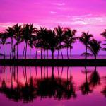 Beach Sunset Purple Wallpapers Top Free Beach Sunset Purple Backgrounds Wallpaperaccess