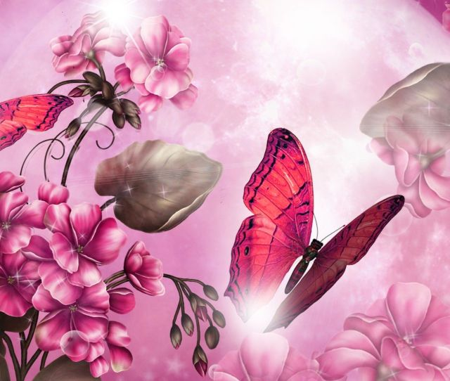 1920x1080 Pictures Pink Butterfly 1920x1080 Wallpaper Wpt8007818 Wallpaper21 Com