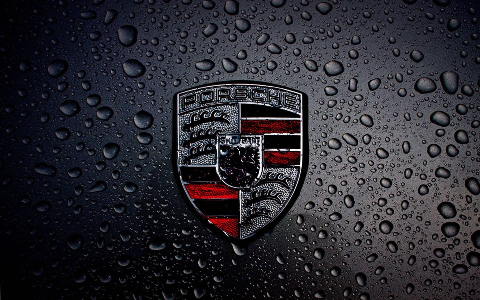 Annotate and transform any document. Lamborghini Logo Wallpapers Top Free Lamborghini Logo Backgrounds Wallpaperaccess