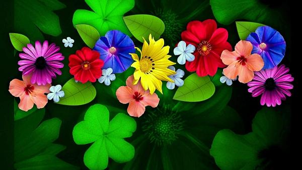 Ultra HD Flower Wallpapers - Top Free Ultra HD Flower ...