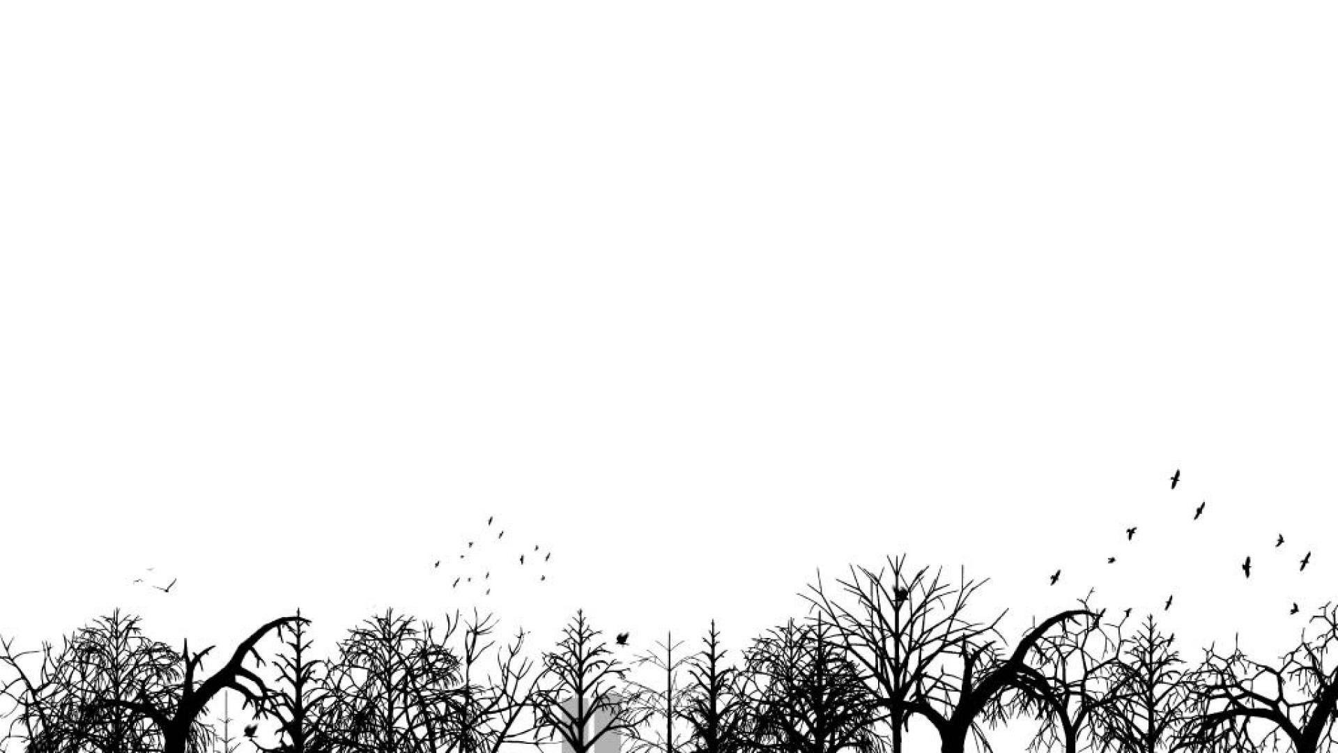 Selimut bulu polos uk 200 x 230cm list pinggir halus tebal. Soft White Aesthetic Wallpapers - Top Free Soft White