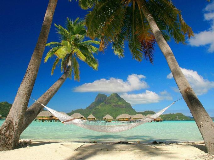 Tropical Pictures For Desktop