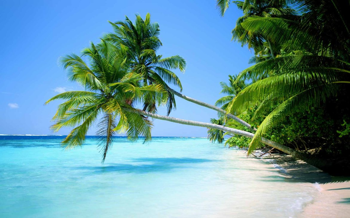 Tropical Beach Wallpaper Widescreen Hd Pictures 4 HD Wallpapers ...