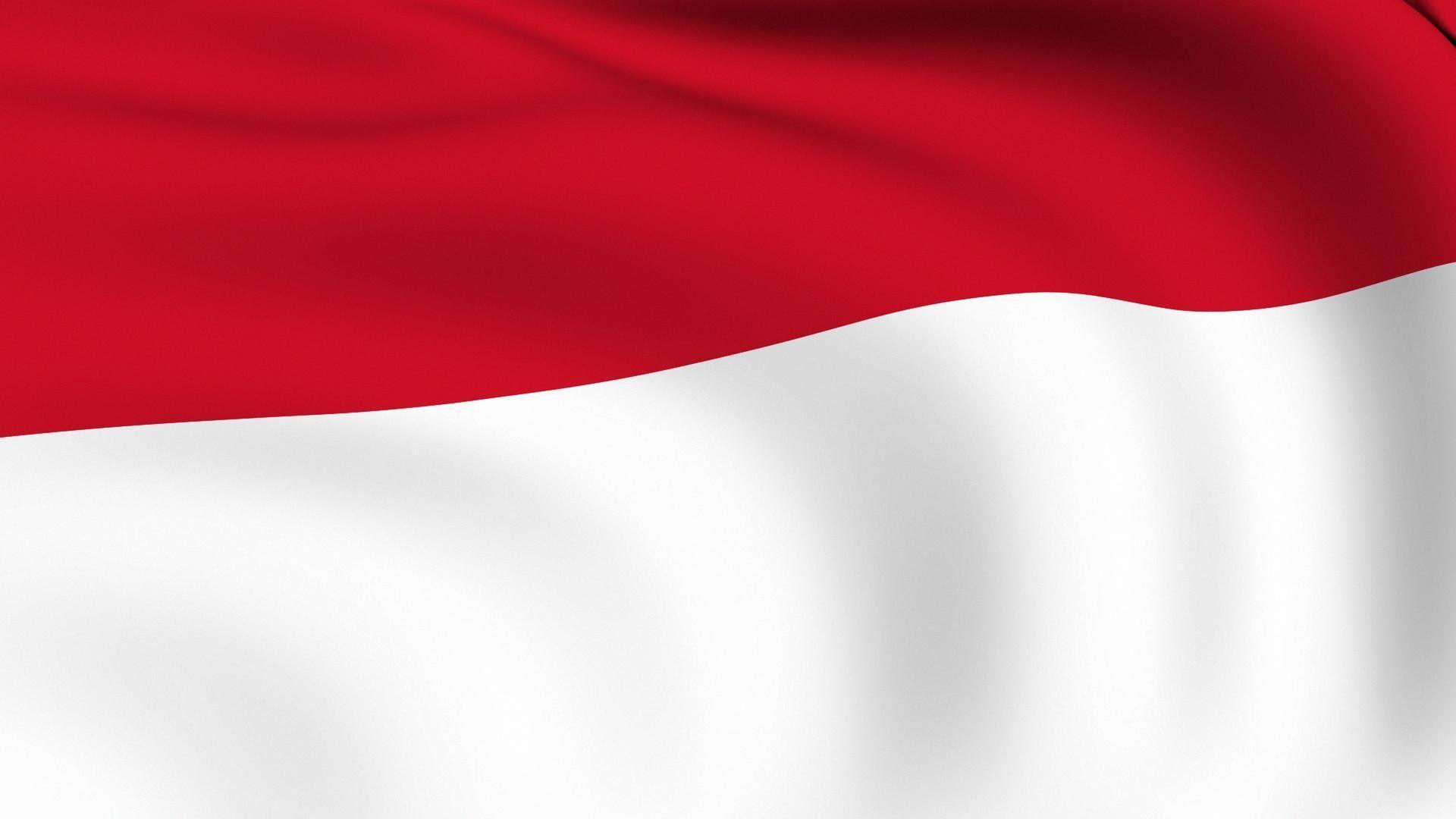 menggam gambar bendera indonesia