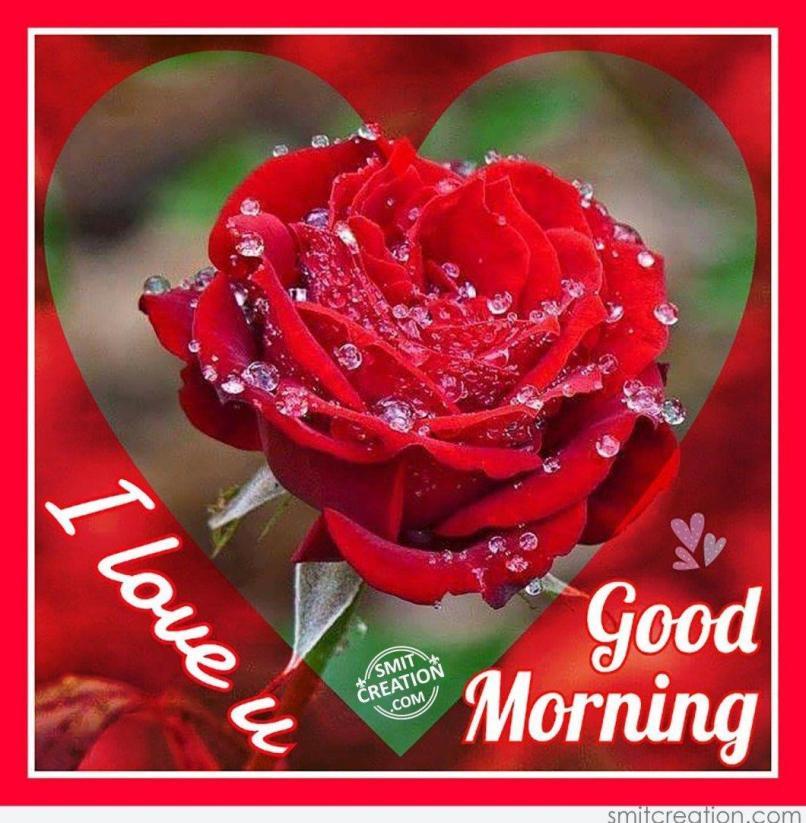 Good Morning Jaan I Love U Images Wallpapersimagesorg