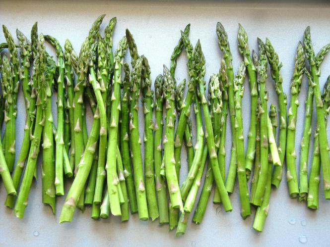 Image result for Asparagus images HD
