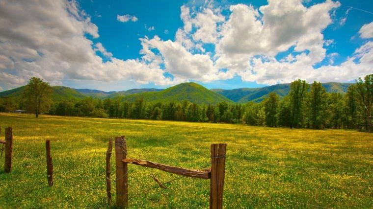Nature HD Image Wallpaper field grass fence sky summer 84356 ...