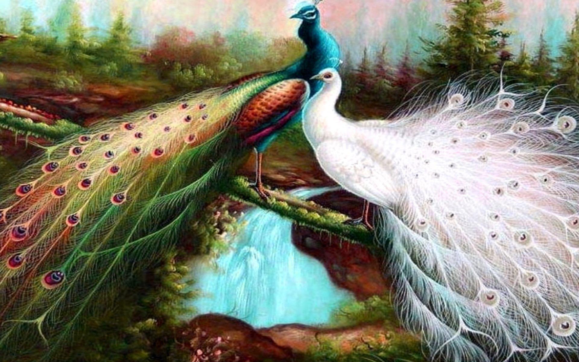 Beautiful Birds Wallpapers Wallpaper Cave