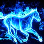 Fire Horse Wallpapers Hd Wallpaper Cave