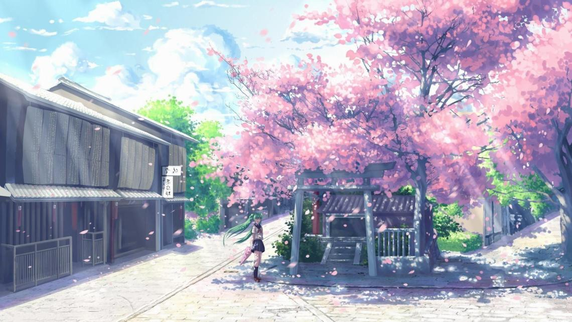 Anime Cherry Blossoms Wallpapers Wallpaper Cave